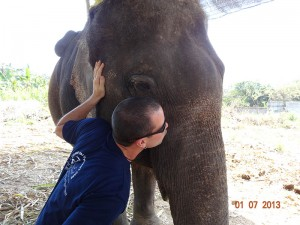 kiss opt 300x225 Mahout training in northern Thailand