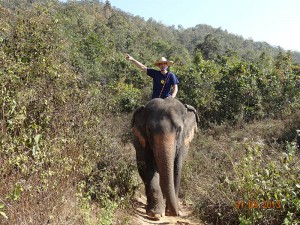 trek03 opt 300x225 Mahout training in northern Thailand