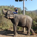 trek opt 150x150 How to get a visa for India while in Chiang Mai